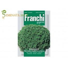Семена на мини босилек Зелена топка - силно ароматен с малки листа