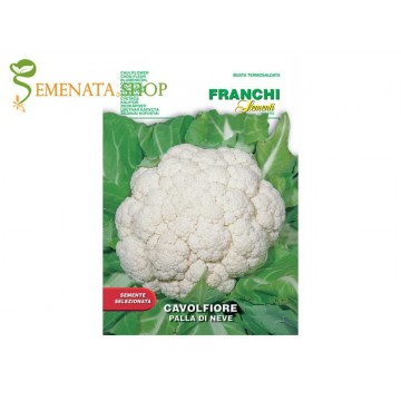 Семена на карфиол Снежна топка