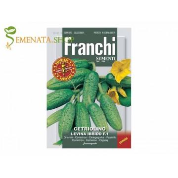 Семена на корнишони Левина f1