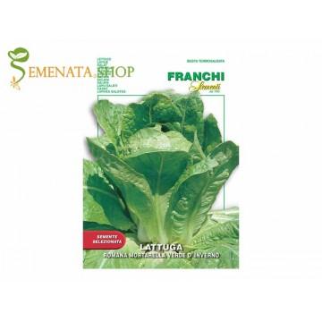 Семена на маруля Мортарела зелена зимна