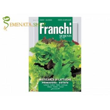 Семена на микс от салати пролет-лято