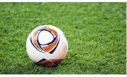 Тревни смески за спортни терени