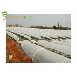 Израелски полиетилен за тунели за разсад и ранно производство 50 микрона с UV и EVA