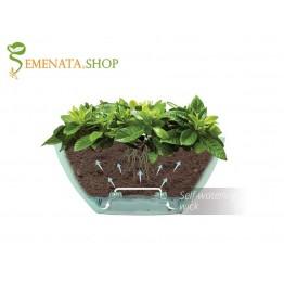 Сандъче за цветя с напоителна система - стилен дизайн и разумна цена
