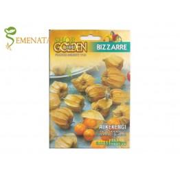 Семена на ядлив Физалис (Physalis alkekengi) - екзотичен и освежаващ вкус