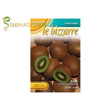 Киви - семена на екзотичното увивно растение с изключителен вкус (Kiwi Actinidia chinensis)