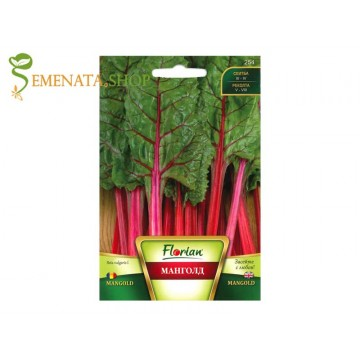 Семена на червен Манголд (листно цвекло, цвекло спаначено) - изключителен вкус и множество полезни свойства