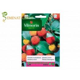 Семена на Ягодово дърво (кумарка, арбутус) - Arbutus unedo екзотичен плод с приятен вкус