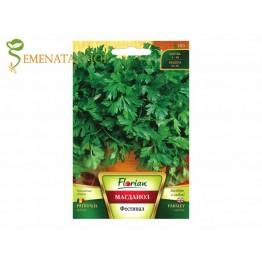 Качествени семена на магданоз Фестивал 68 - силно ароматен листен сорт за градина и саксия