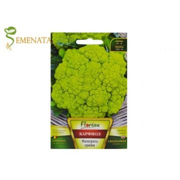 Семена на късен Карфиол Мацерата грийн с интересен наситено зелен цвят