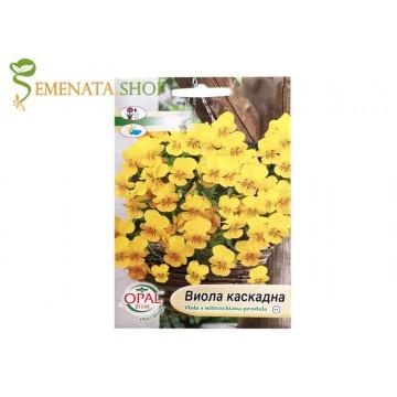 Семена на жълта каскадна Виола (теменужка)