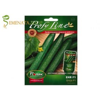 Семена на краставици за оранжерия и тунел Еня F1 - супер вкусен сорт за целогодишно отглеждане