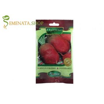 Семена на червено кръмно цвекло Червен Екендорф