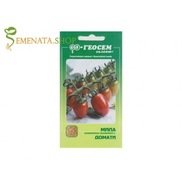 Семена на домати Чери сорт Мила - цилиндрични и супер сладки