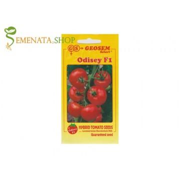 Семена на домати за производство Одисей F1 - супер издръжливи на съхранение до 20 дни