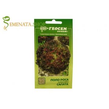 Семена на червена маруля - салата къдрава Лоло Роса крехка и вкусна