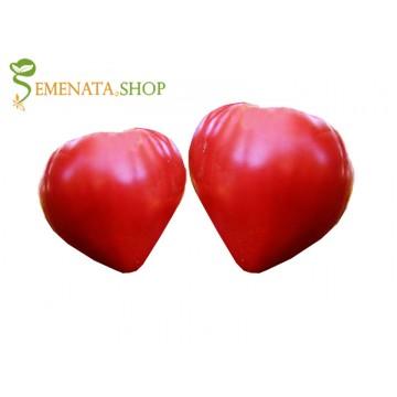Семена на домати Алено сърце ИЗК Марица - червен гигант с уникален вкус